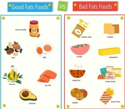 Fats - Good vs Bad